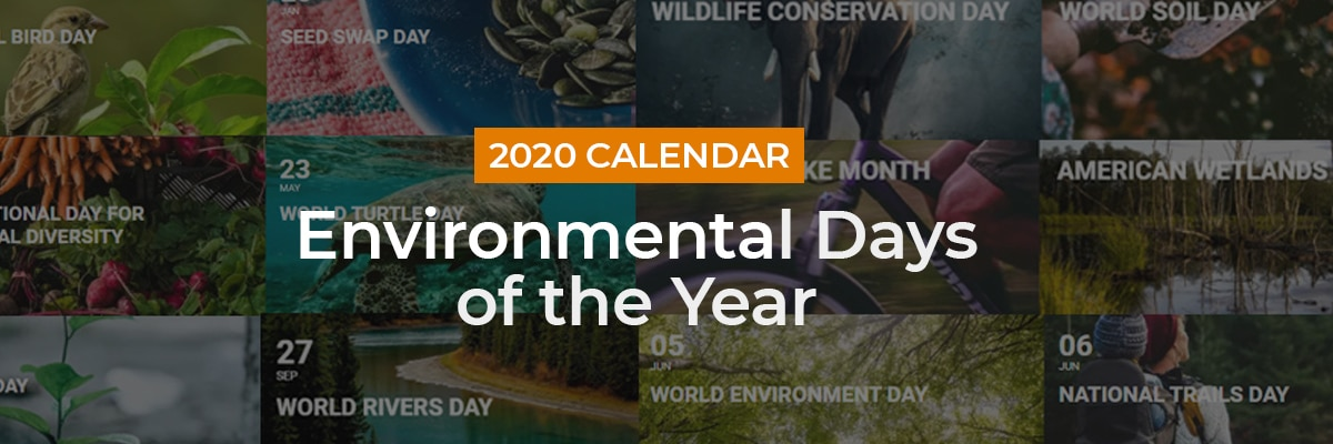 2020 calendar of environmental days of the year
